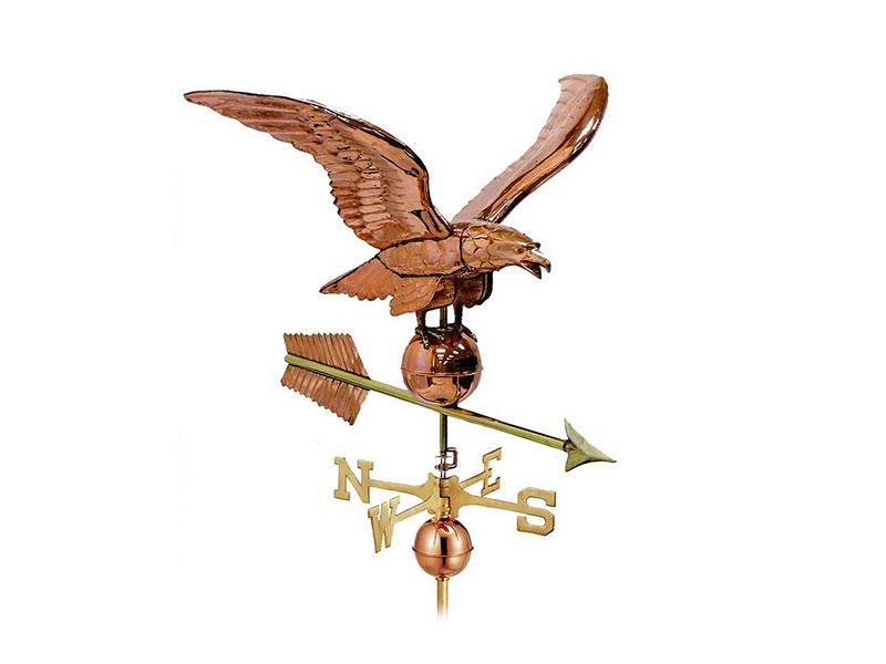 (0955P) Smithsonian Eagle Image