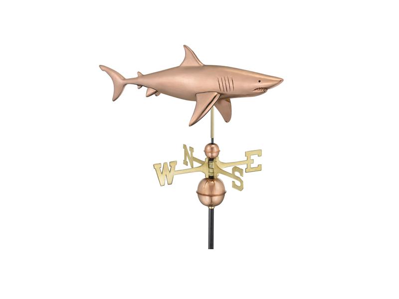 (965) Shark Image